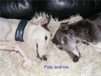 Joey and Polly